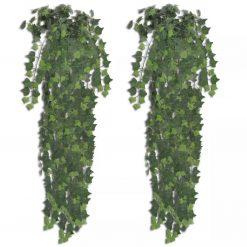Arbusto de hera